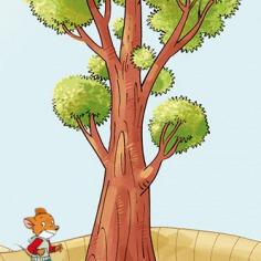 Test je bomenkennis!