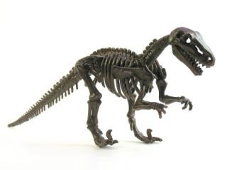Ratossauros Lourinhatex