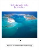 T.f - Nel triangolo delleBermuda...