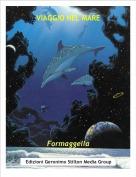 Formaggella - VIAGGIO NEL MARE