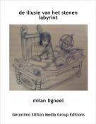 milan ligneel - de illusie van het stenen labyrint