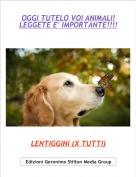 LENTIGGINI (X TUTTI) - OGGI TUTELO VOI ANIMALI!LEGGETE E' IMPORTANTE!!!!