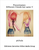 pichula - Precentasion: