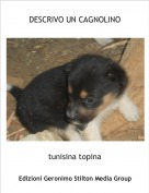 tunisina topina - DESCRIVO UN CAGNOLINO