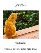 rileybigotes - ¿VOLVERAS?
