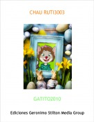 GATITO2010 - CHAU RUTI3003