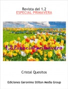 Cristal Quesitos - Revista del 1.2
