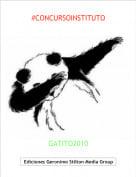 GATITO2010 - #CONCURSOINSTITUTO