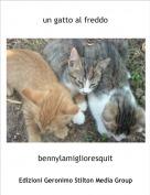 bennylamiglioresquit - un gatto al freddo