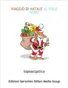 topoacqatico - VIAGGIO DI NATALE AL POLO NORD